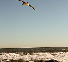 New Jersey Shore by capturingsmiles