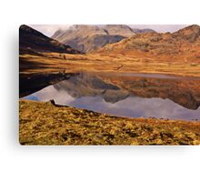 Beautiful Blea Tarn Canvas Print