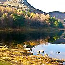 Blea Tarn by Trevor Kersley