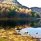 Blea Tarn by Trevor Kersley