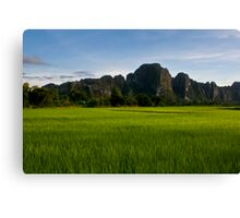 Lao Rice Paddy Canvas Print