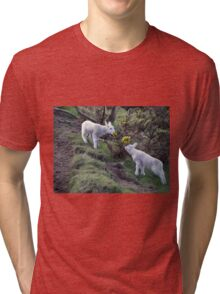 Lambs Puppy Food - Donegal Ireland  Tri-blend T-Shirt