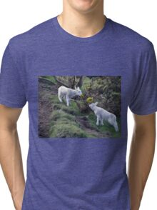 Lambs Puppy Food - Donegal Ireland  Tri-blend T-Shirt