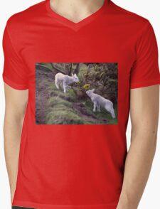 Lambs Puppy Food - Donegal Ireland  Mens V-Neck T-Shirt