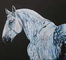 Percheron by samcannonart