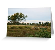 Reeds about the bridge and the trees Greeting Card