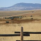 Wyoming Landscape by Frank Romeo
