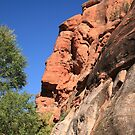 Red Rock Mountainside by Frank Romeo