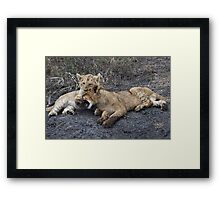 He's Ok, He's My Brother ! Framed Print