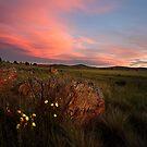 Days End by David Haworth