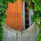 Orange Door Entrance  by leftwinger7