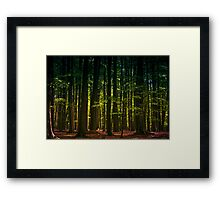 Rainbow Trees Framed Print