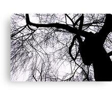 Schattenbaum Canvas Print