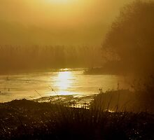 Golden sun rise by Russell Couch