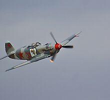Yak 9 by Cole Stockman