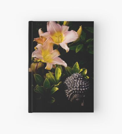 The Light Beyond Hardcover Journal