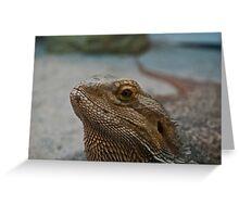 Bearded Dragon Closeup Greeting Card