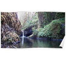 Eagle Creek I Poster