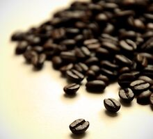 Pile of Fresh Coffee Beans on White with Vignette by HotHibiscus