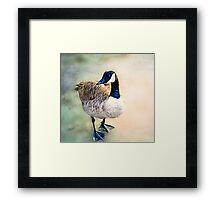 Goosey Goosey Gander Framed Print