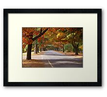 Bright Autumn Framed Print