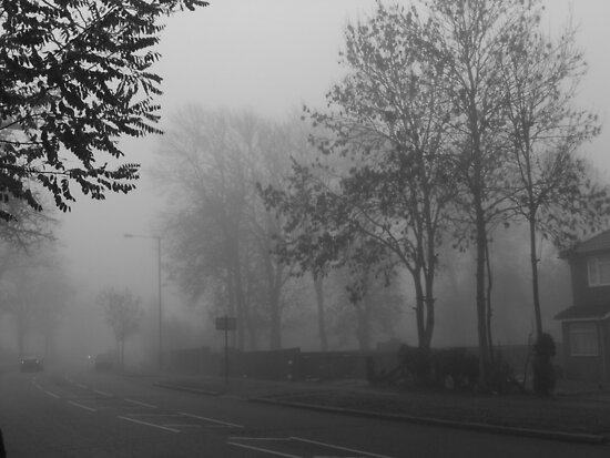 Foggy suburbia by Themis