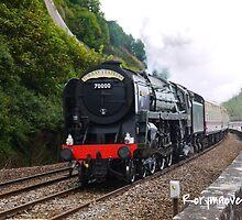 British Railways 70000 'Britannia' at Teignmouth by Rorymacve