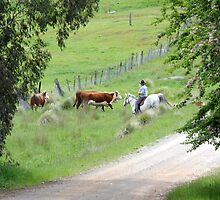 """"""" The Drovers Lane """" by helmutk"""