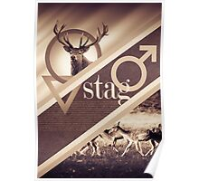 Stag Poster Poster