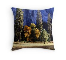 """Autumn Sun Glow"" Throw Pillow"