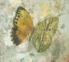 'Happiness is a Butterfly' by Sarah Vernon