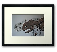 Protoceratops Fossil Skull and Sketch Framed Print