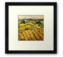 Sun Harvest Framed Print