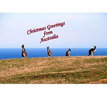 Christmas Greetings from Australia. Photographic Print