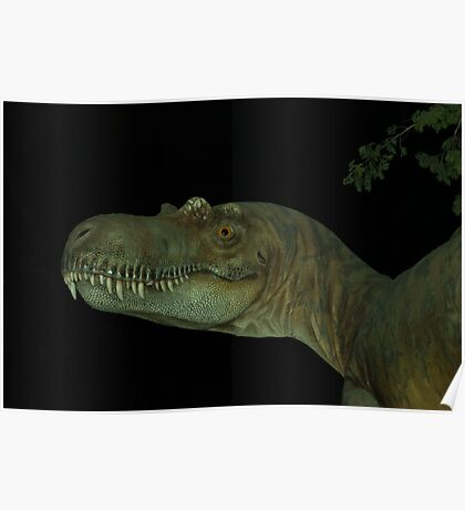 Tyrannasaurus Rex profile Poster