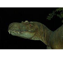 Tyrannasaurus Rex profile Photographic Print