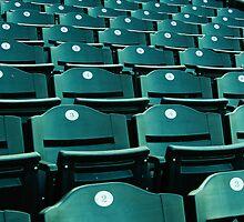 Green Seats by Amanda O'Halloran