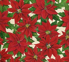 Holiday Poinsettia by lizblackdowding