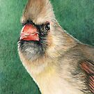 Female Cardinal by Charlotte Yealey