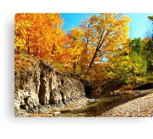 Autumn  curves Canvas Print