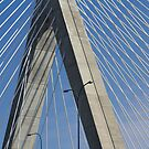 The Bridge by Lynn Wiles