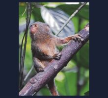 Awesome Pygmy Marmoset Kids Clothes