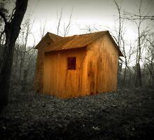 Orange Shed  by Paul Lubaczewski