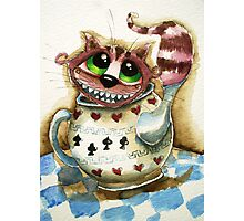The Cheshire Cat - snuggly teapot Photographic Print