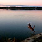 Jump for joy by LadyFi