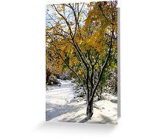 winter grace Greeting Card