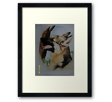 Police Dog who took the bullet Framed Print