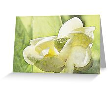 Forever Flowers Greeting Card