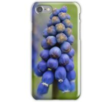 Lovely Blues iPhone Case/Skin
