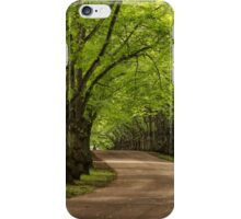 Parkway iPhone Case/Skin